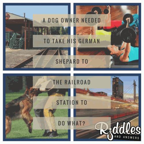 Dog Riddles