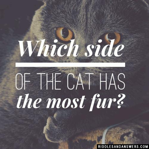 Which side of a cat has the most fur?