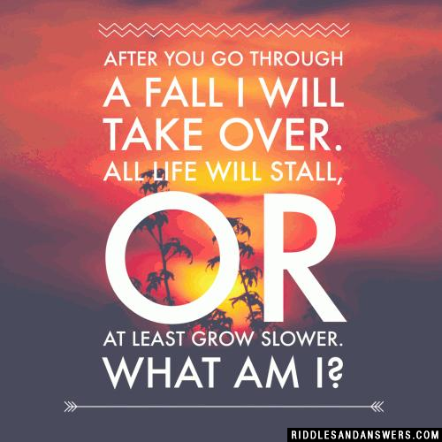 After you go through a fall I will take over. All life will stall, or at least grow slower. What am I?