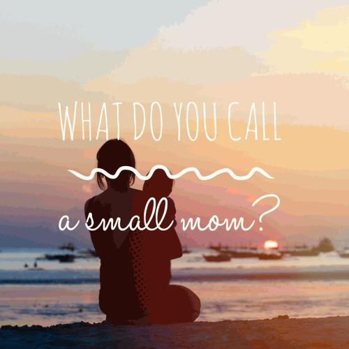 What do you call a small mom?