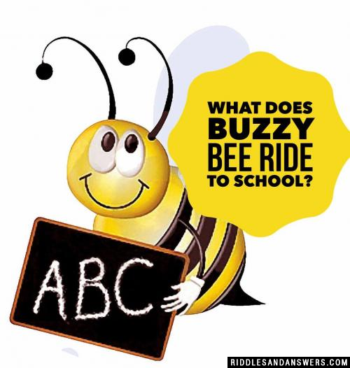 What does Buzzy Bee ride to school?