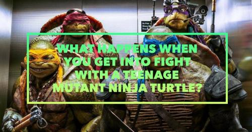 What happens when you get into fight with a Teenage Mutant Ninja Turtle?