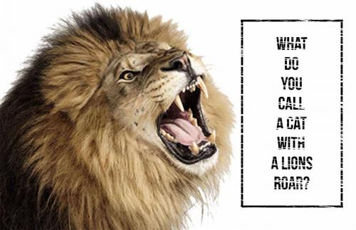 Lion Riddle