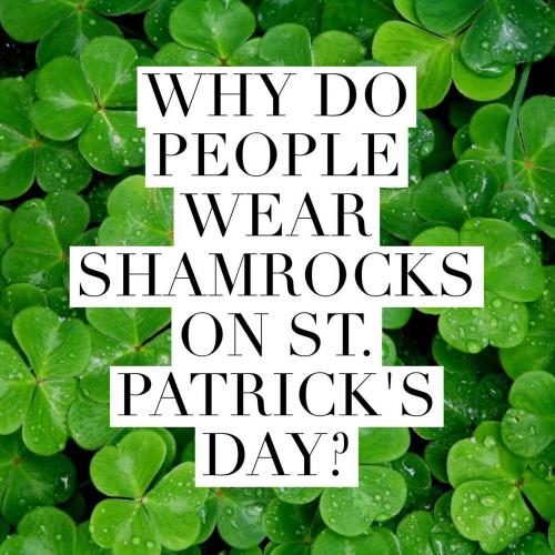 Why do people wear shamrocks on St. Patrick's Day?
