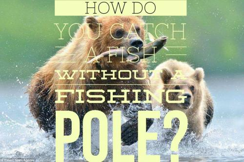 How do you catch a fish without a fishing pole?