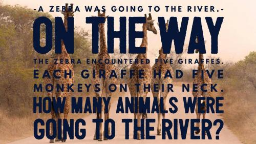 A zebra was going to the river. On the way the zebra encountered five giraffes. Each giraffe had five monkeys on their neck. How many animals were going to the river?