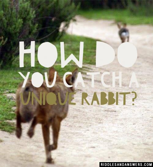 How do you catch a unique rabbit?