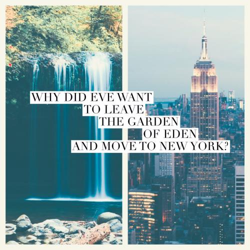 New York Riddles
