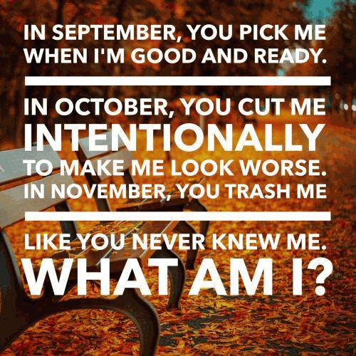 November Riddles