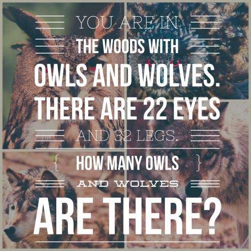 You are in the woods with owls and wolves. There are 22 eyes and 32 legs. How many owls and wolves are there?