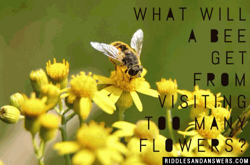 What will a bee get from visiting too many flowers?
