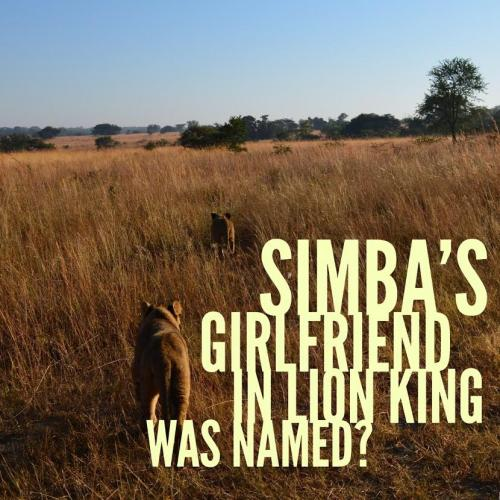 Simba's girlfriend in Lion King was named?