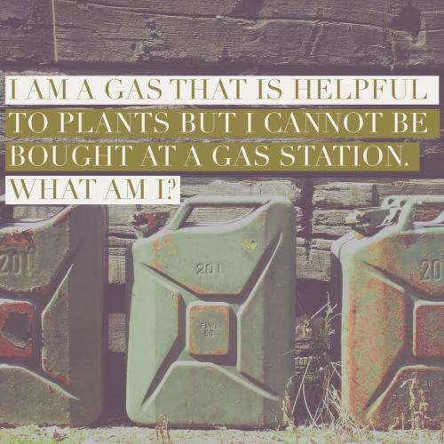 I am a gas that is helpful to plants, but I cannot be bought at a gas station. What am I?