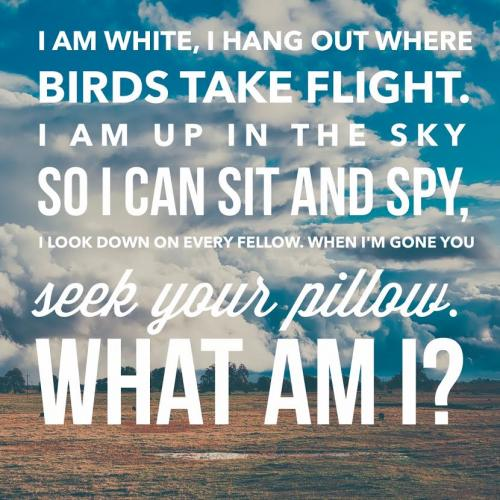 I am white, I hang out being where birds take flight. I am up n the sky so I can sit and spy, I look down on every fellow. When I'm gone you seek your pillow. What am I?