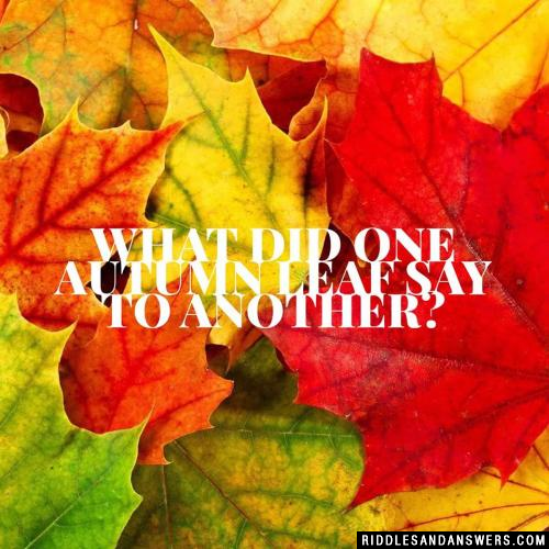 What did one autumn leaf say to another?