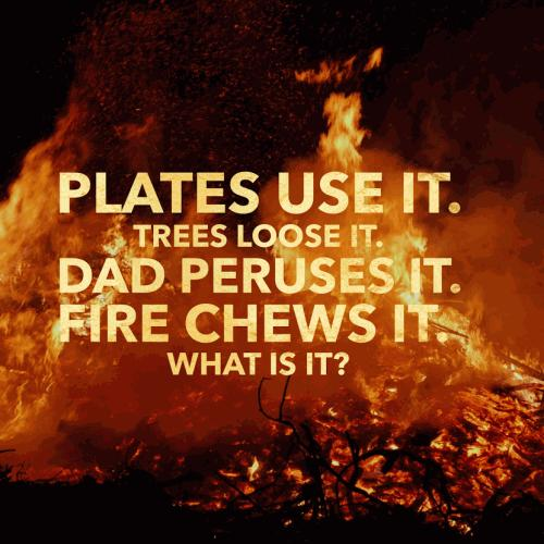 Plates use it. Trees loose it. Dad peruses it. Fire chews it.  What is it?