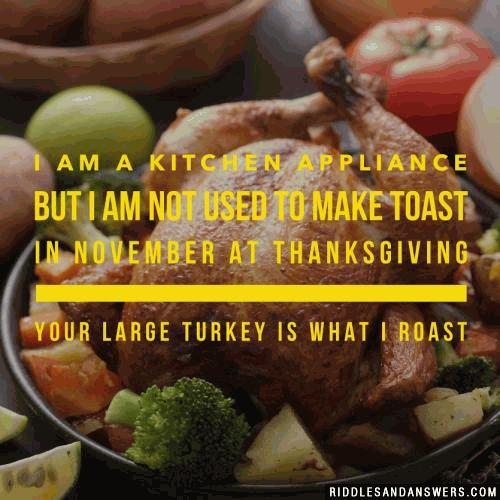 I am a kitchen appliance