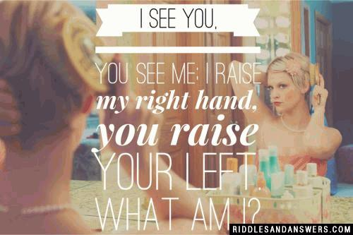 I see you, you see me; I raise my right, you raise your left. What am I?
