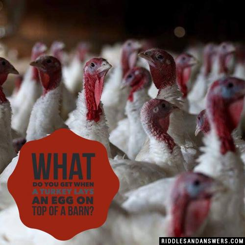 What do you get when a turkey lays an egg on top of a barn?
