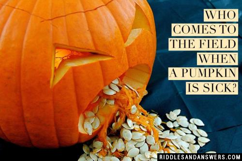 Who comes to the field when a pumpkin is sick?