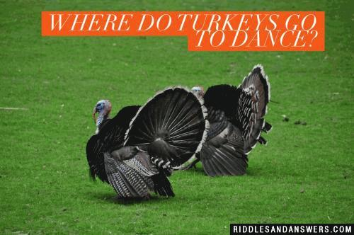 Where do turkeys go to dance?