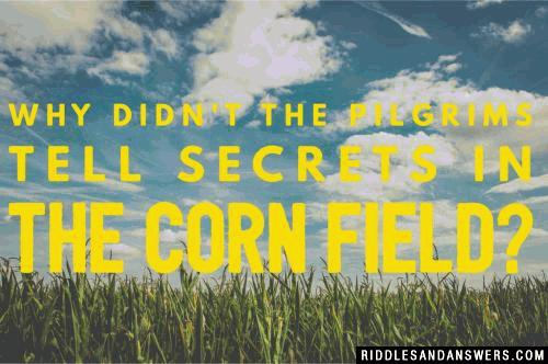 Why didn't the Pilgrims tell secrets in the corn field?