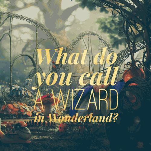 What do you call a wizard in Wonderland?