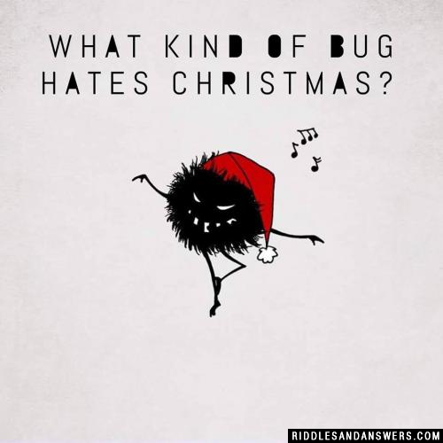 What kind of bug hates Christmas?