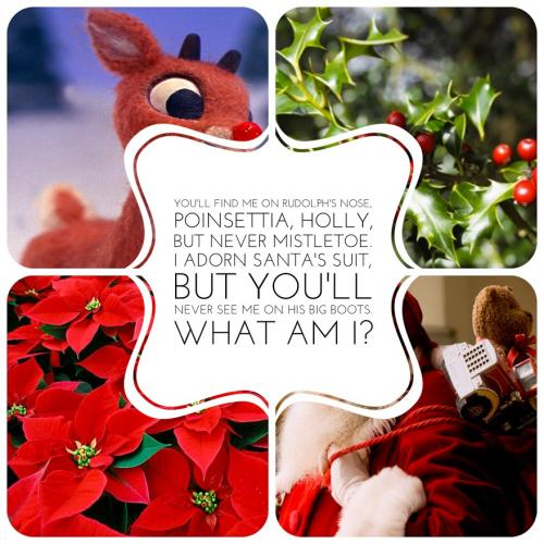 You'll find me on Rudolph's nose, poinsettia, holly, but never mistletoe. I adorn Santa's suit, but you'll never see me on his big boots. What am I?