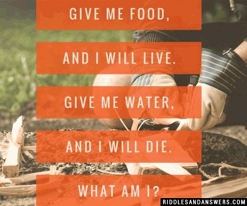 Give me food, and I will live. Give me water, and I will die. What am I?
