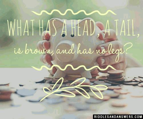 What has a head, a tail, is brown, and has no legs?
