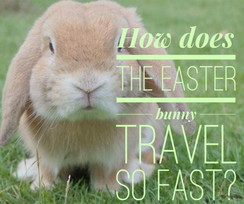 How does the Easter bunny travel so fast?