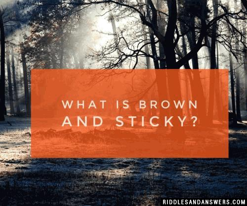 What is brown and sticky?