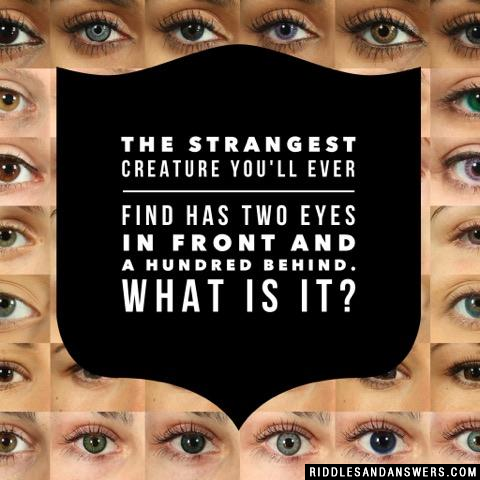 The strangest creature you'll ever find has two eyes in front and a hundred behind. What is it?