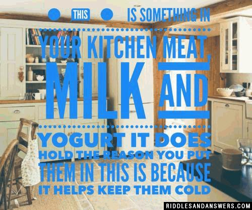 This is something in your kitchen Meat, milk and yogurt it does hold The reason you put them in this Is because it helps keep them cold