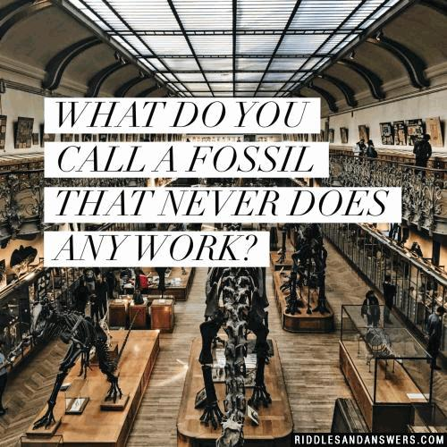 What do you call a fossil that never does any work?