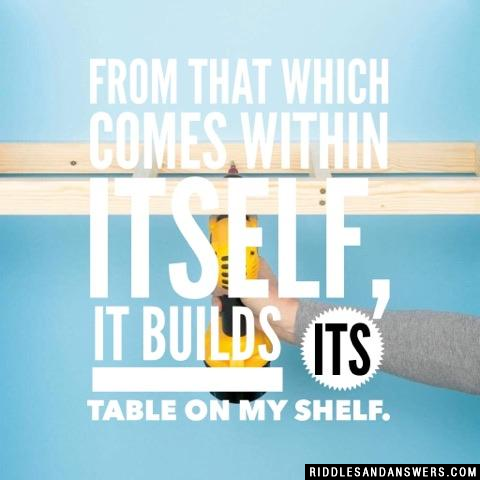 From That Which Comes Within Itself,  It Builds Its Table on My Shelf.
