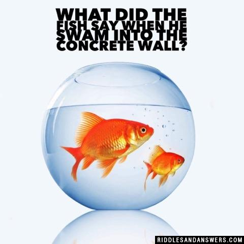 What did the fish say when he swam into the concrete wall?