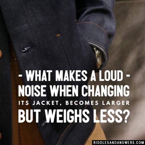 What makes a loud noise when changing its jacket, becomes larger but weighs less?