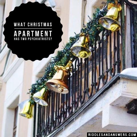 What Christmas apartment has two psychiatrists?