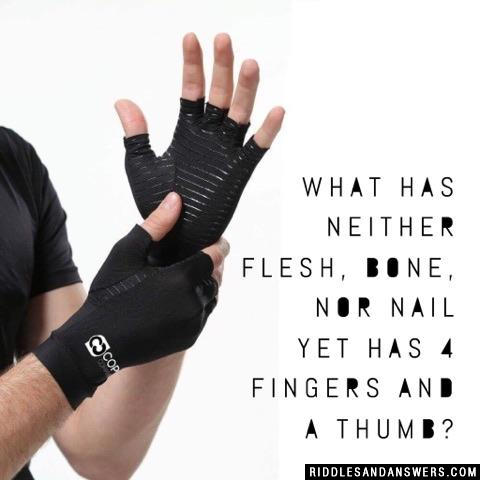 What has neither flesh, bone, nor nail yet has 4 fingers and a thumb?