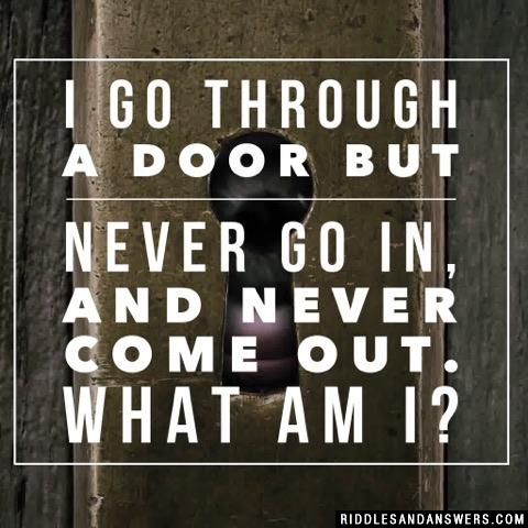 I go through a door but never go in, and never come out. What am I?
