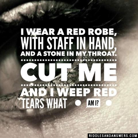 I wear a red robe, With staff in hand, And a stone in my throat. Cut me and I weep red tears  What am I?