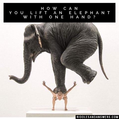 How can you lift an elephant with one hand?