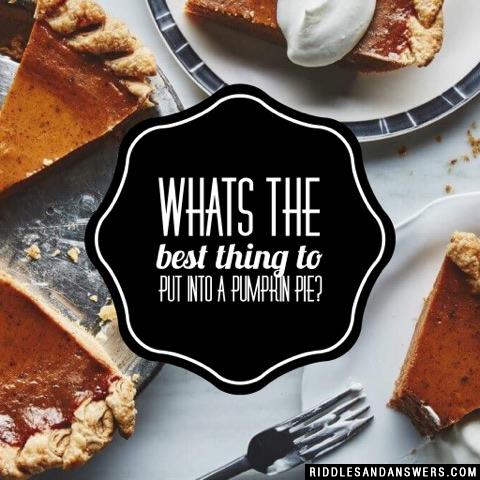 Whats the best thing to put into a pumpkin pie?