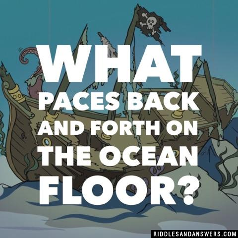 What paces back and forth on the ocean floor?