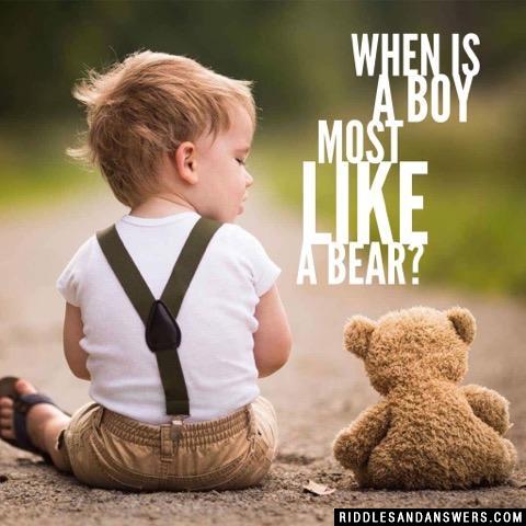 When is a boy most like a bear?