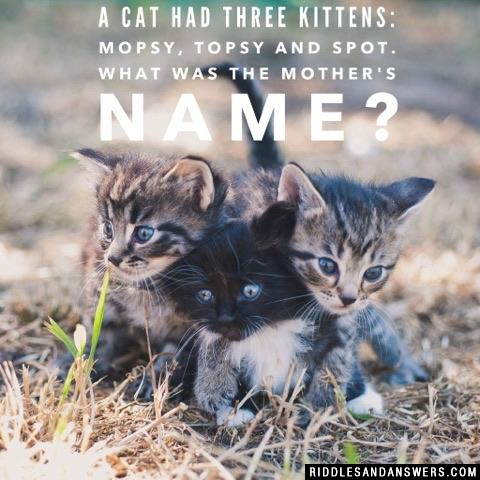A cat had three kittens: Mopsy, Topsy and Spot. What was the mother's name?