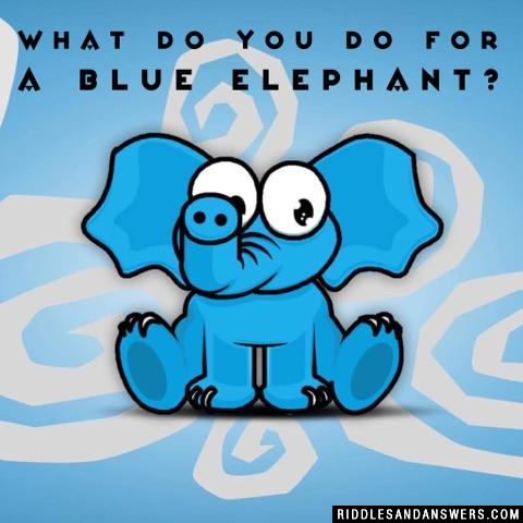 What do you do for a blue elephant?