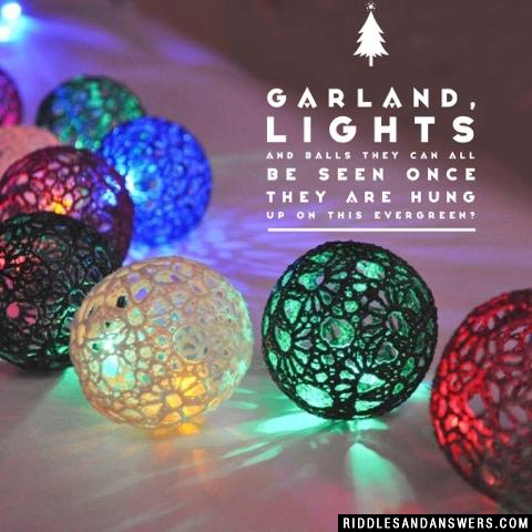 Garland, lights and balls They can all be seen Once they are hung up On this evergreen?